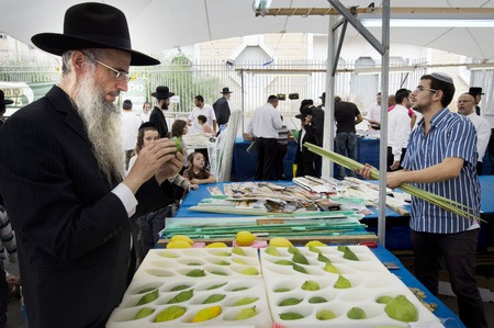 tabernacles: ASHDOD - OCTOBER 12 : Jewish ultra-orthodox  purchasing blessings at a four species market for the Jewish holiday of Sukkot on October 12 2011 in Ashdod,Israel. Editorial