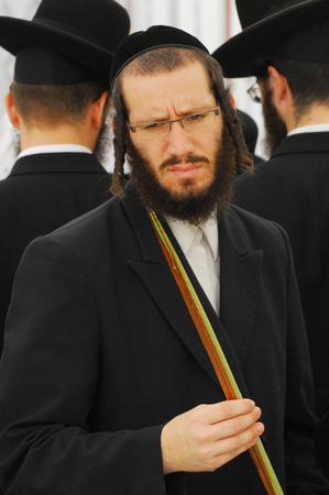 tabernacles: ASHDOD - OCTOBER 12 : Jewish ultra-orthodox  man inspect Lulav at a four species market for the Jewish holiday of Sukkot on October 12 2011 in Ashdod, Israel. Editorial
