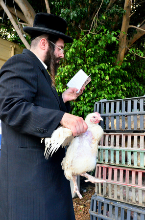 ashdod: ASHDOD - SEPTEMBER 15 : Ultra orthodox Jewish man waves a chicken over himself during the Kaparot ceremony held on September 15 2010 in Ashdod Israel. Editorial