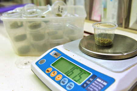 permitted: REHOVOT - JULY 17: Medical Cannabis on a scale in nursing home Hadarim on July 17, 2011.Marijuana is illegal in Israel but medical use has been permitted since the early 1990s for patients pain-related illnesses