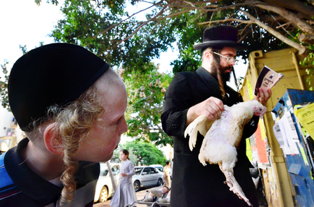 ashdod: ASHDOD - SEPTEMBER 15 :An ultra orthodox child watch his  father waves a chicken over himself during the Kaparot ceremony held on September 15 2010 in Ashdod Israel. Editorial