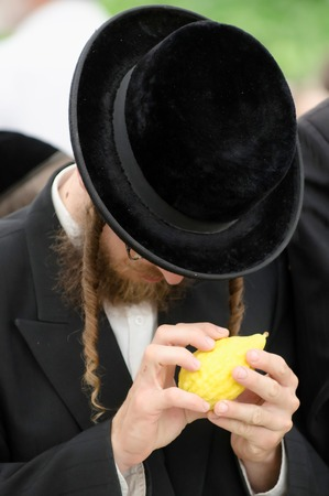 ashdod: ASHDOD, ISRAEL - OCTOBER 12 2011: Jewish ultra-orthodox residents of Ashdod city are purchasing blessings at a four species market for the Jewish holiday of Sukkot on Wednesday 12 October, 2011. Sukkot is a Jewish holiday celebrated in late September to l Editorial