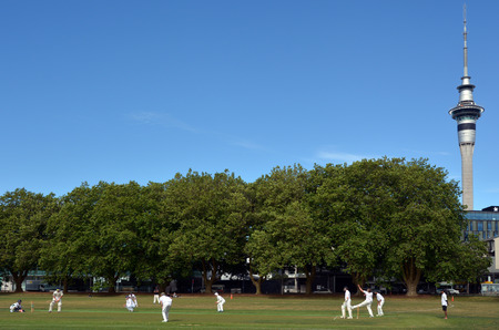 play popular: AUCKLAND - NOV 14 2015:Men play Cricket in victoria park Auckland, New Zealand.Its one of New Zealand most popular national sport and the first recorded game took place in Wellington in December 1842. Editorial