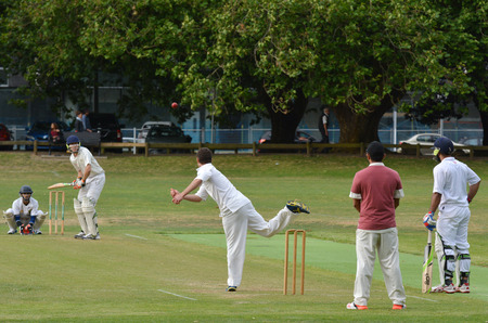 play popular: AUCKLAND - NOV 14 2015:Men play Cricket in victoria park Auckland, New Zealand.Cricket is played by 120 million players in many countries, making it the worlds 2nd most popular sport.