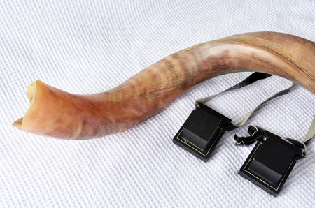 tefillin: Shofar (horn) with tefillin on Rosh Hashanah and Yom Kippur High Holidays. Traditional Jewish holiday symbol. Concept with copy space