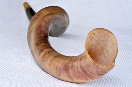 yom kippur: Shofar (horn) from the horn of a Greater kudu on Rosh Hashanah and Yom Kippur High Holidays. Traditional Jewish holiday symbol. Concept with copy space
