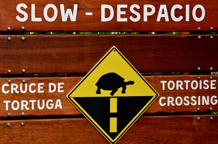 slow: Tortorise crossing slow speed sign. Stock Photo