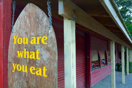 what to eat: You are what you eat sign. Food concept