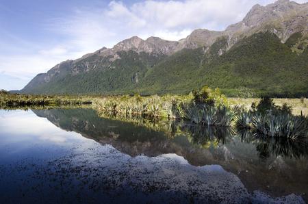 fiordland: The Mirror lake in Fiordland, New Zealand