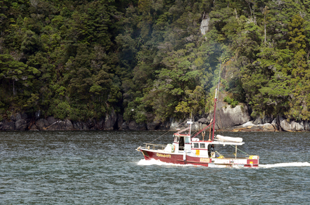 lobster boat: MILFORD SOUND,NZ - JAN 14:Fishing boat on Jan 14 2014.Southland has the largest rock lobster crayfish fishery in NZ, currently returning more than 30 million in annual exports, mostly to Hong Kong.