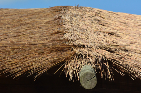 architectural architectonic: Thatching Straw roof abstract background texture.