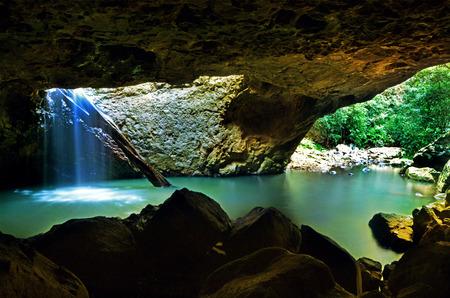 The Natural Bridge at Springbrook National Park in Queensland Australia. Banque d'images