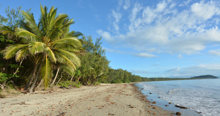port douglas: Panoramic landscape of Four Mile Beach in Port Douglas at the tropical north of  Queensland,  Australia