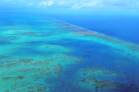 barrier: Aerial view of arlington coral reef at the Great Barrier Reef near Cairns in Tropical North Queensland, Queensland, Australia.