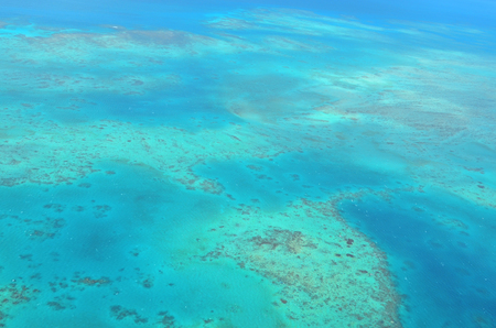 great barrier reef marine park: Aerial view of Oystaer coral reef at the Great Barrier Reef near Cairns in Tropical North Queensland, Queensland, Australia.