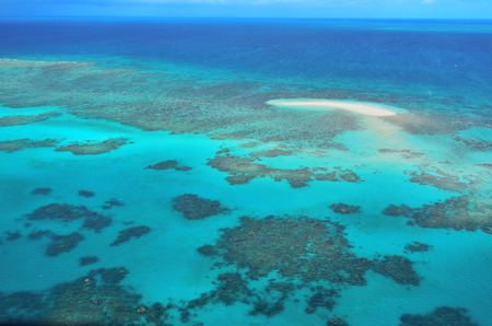 barrier: Aerial view of Oystaer coral reef at the Great Barrier Reef near Cairns in Tropical North Queensland, Queensland, Australia.