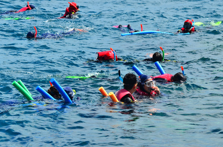 snorkelling: QUEENSLAND, AUS - APR 16 2016:People snorkelling and dive in the Great Barrier Reef in Queensland, Australia, a popular tourist destination of 2 million visitors every year.