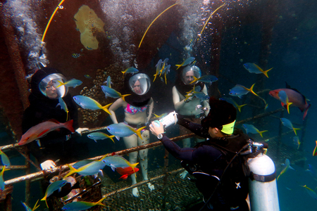 barrier: QUEENSLAND, AUS - APR 16 2016:People Helmet Diving in the Great Barrier Reef Queensland Australia.The Great Barrier Reef is a popular tourist destination with around 2 million visitors every year.