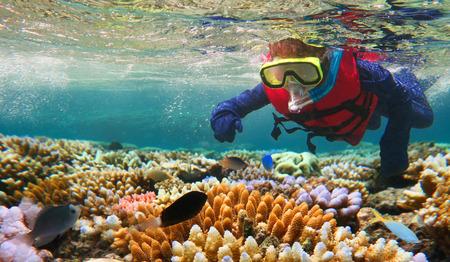 Bambino (età ragazza 5-6) lo snorkeling immersioni nella Grande Barriera Corallina nel nord tropicale del Queensland, Australia