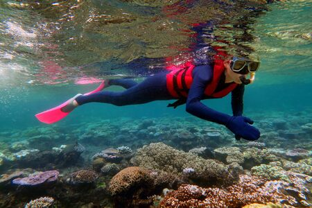 La donna lo snorkeling immersioni nella Grande Barriera Corallina Queensland Australia Archivio Fotografico - 57327022