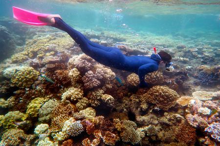La donna lo snorkeling immersioni nella Grande Barriera Corallina Queensland Australia Archivio Fotografico - 57327028