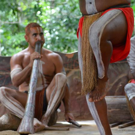 australian ethnicity: Yirrganydji Aboriginal men playand dance Aboriginal music during Aboriginal culture show in Queensland, Australia.