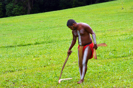 boomerangs: Yirrganydji Aboriginal warrior collect boomerangs from the ground  during cultural show in Queensland, Australia.