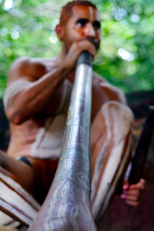 australian ethnicity: Yirrganydji Aboriginal man play Aboriginal music on didgeridoo, instrument during Aboriginal culture show in Queensland, Australia.