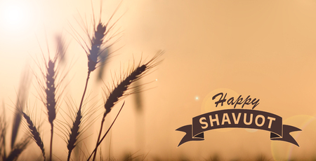 shavuot: Happy Shavuot greeting card for the Jewish holiday of shavuot image illustration