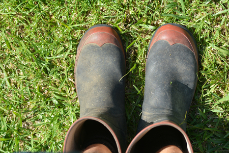 personal point of view: Personal point of view of mans gardening gumboots on green grass. copy space