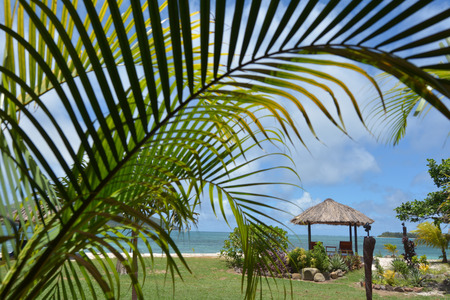 Landscape from a resort in Fiji. Travel and tourism concept. copy space