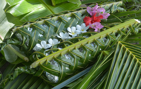 Fijian food Lovo. Lovo (Fijian cooking food underground) is commonly made during special events such as funerals, weddings, Christmas or birthdays. Banque d'images