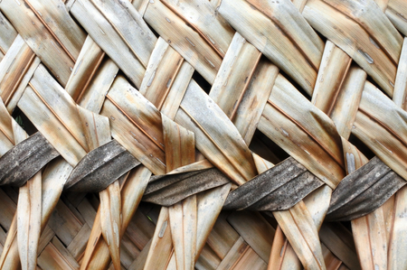 Coconut Palm leaves weaving background and texture. Stock Photo