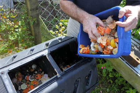 Mature man hands emptying a container full of domestic food waste, ready to be composted in the home garden. Food recycling and environment concept. copy space Imagens - 86049967