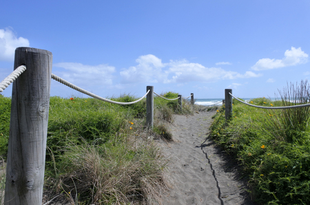 Sand dune path in Piha beach in the west coast on the North Island near Auckland, New Zealand Stock Photo