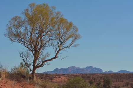 Yulara, Northern Territory, Australia - May 16 2019:Kata Tjuta Olgas.The Anangu people believe the great rocks are homes to spirit from the Dreaming, and since 1995 the site is being used once again for cultural ceremonies.