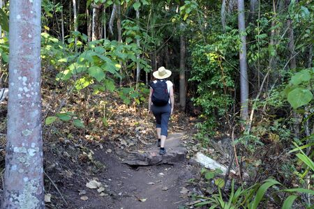 Australian adult woman hiking at Litchfield National Park in the  Northern Territory of Australia 新聞圖片