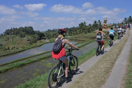 Bali, Indonesia - July 28 2019:Biking tour to rice field in Jatiluwih rice terraces in Bali Indonesia.In 2002 environmental group formed to protect Balis ecosystems while continuing to grow the tourism trade. 新聞圖片