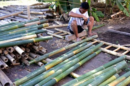 Gili Air, Indonesia - August 02 2019:Indonesian man preparing bamboo scaffolding.Bamboo has a greater tensile strength than steel. It is also much cheaper to use, and completely environmentally friendly.