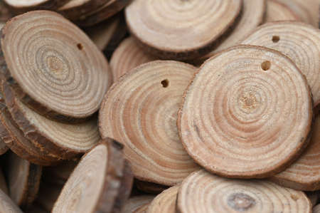 Small natural round wood circles pieces disk tree bark Reklamní fotografie