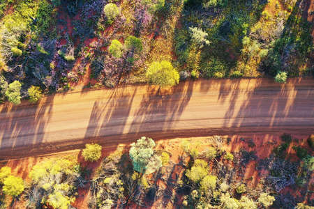 Aerial drone landscape view of an empty Australian outback dirt road with blossoming flowers and trees during sunset.
