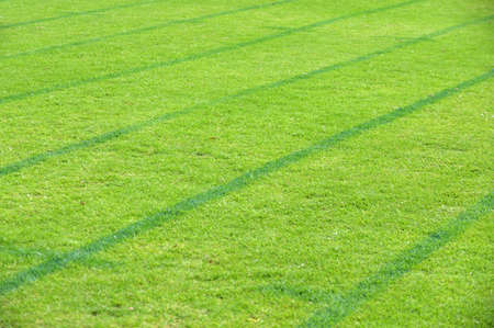 on grass running track outdoors abstract background and texture.