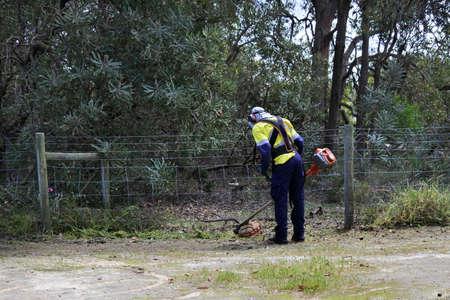 Professional landscape gardener using bush trimmer weed cutter outdoors.
