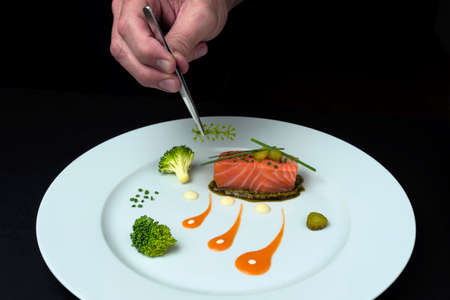 CHEF'S HAND WITH TWEEZERS DECORATING A MINIMALIST FOOD PLATE. GOURMET DISH CONCEPT.