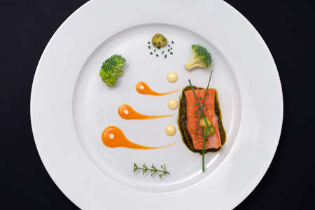 DELICIOUS AND COLORFUL MINIMALIST FOOD DISH OF SALMON. CREATIVE HIGH CUISINE CONCEPT.