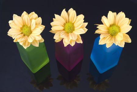 Yellow daisy flowers arranged in colorful bottles photo