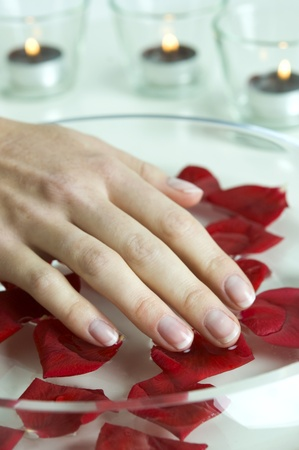 Vrouwelijke hand over water met rozenblaadjes Stockfoto