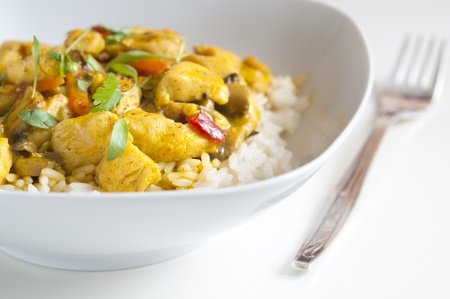 Chicken curry in a white bowl with fork photo