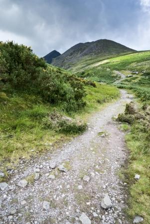 郡のケリー、アイルランドのディングル半島の山道