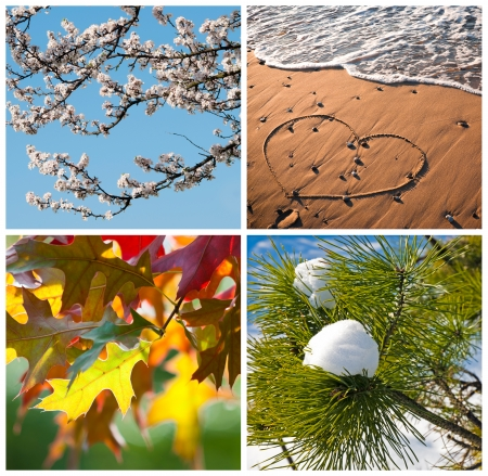 Four seasons concept with spring blossom, summer beach, autumn leaves and snow